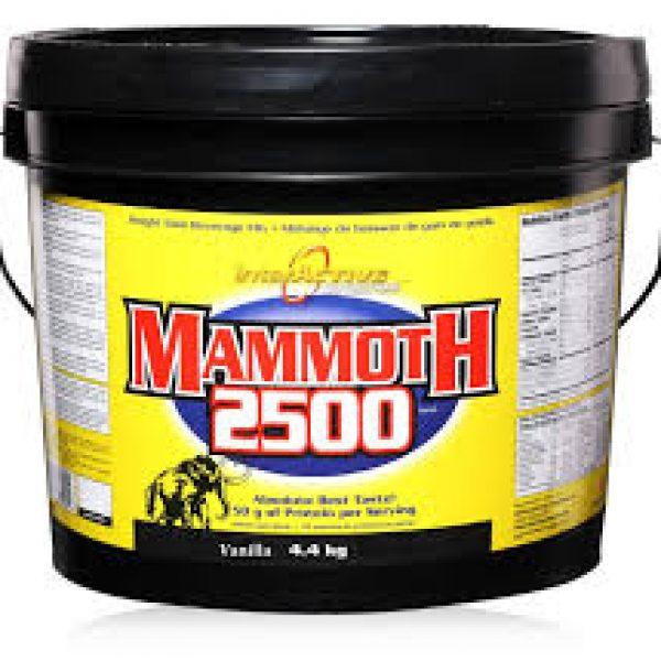 InterActive-Mammoth-2500-Free-Shaker