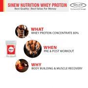 Whey Protein Whywhen