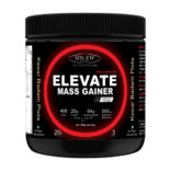 Sinew Nutrition Elevate Mass Gainer, Complex Carb & Proteins in 3:1 ratio with DigiEnzymes, 300gm / 0.66lb – Kesar Badam Pista Flavour