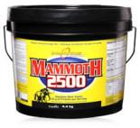 InterActive Mammoth 2500 – Free Shaker