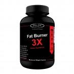 Sinew Nutrition Natural Fat Burner 3X (Green Tea, Green Coffee & Garcinia Cambogia Extract) – 700 mg (90 Veg Capsules)
